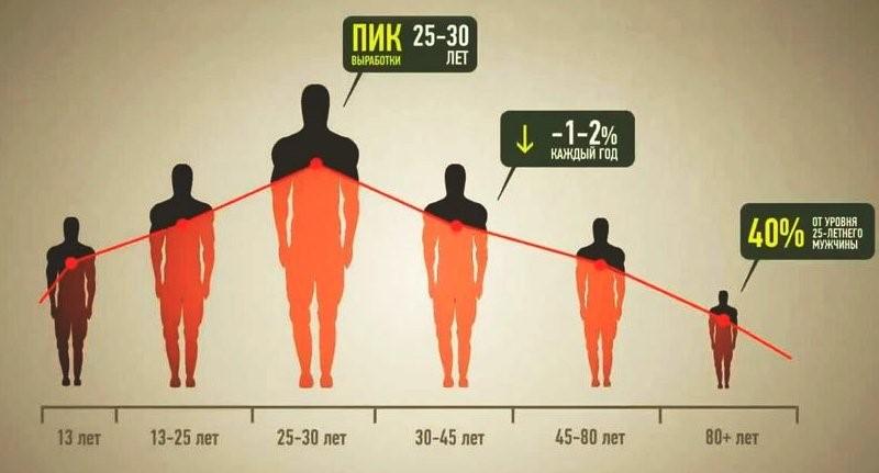Снижение уровня тестостерона в зависимости от возраста