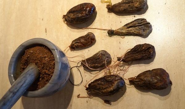 Измельченная бобровая струя