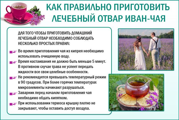 Как правильно приготовить отвар иван-чая