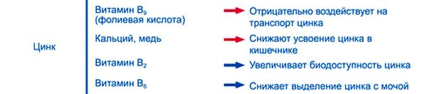 Взаимодействие цинка с другими нутриентами